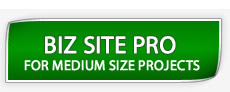 Website plan Business site pro plan